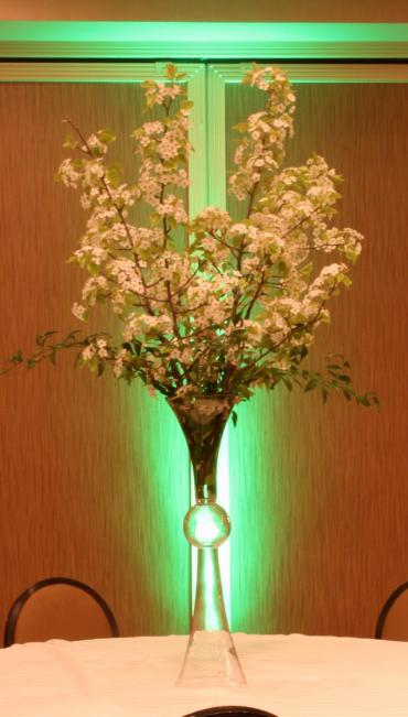 Pear blossoms elevated centerpiece