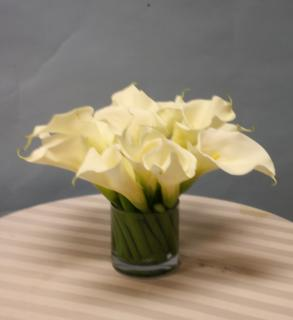 low cut callas in cylinder