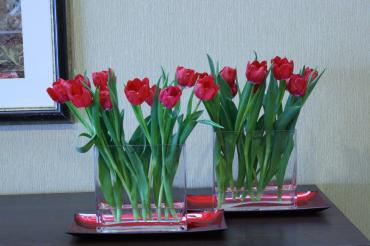 Growing Tulips long centerpiece
