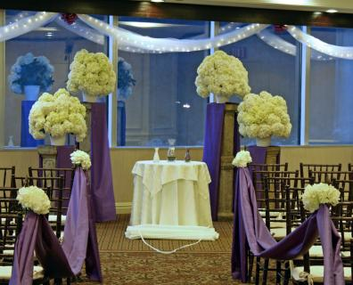 Clouds of Hydrangea Wedding Ceremony